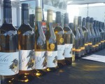 Wines for sales at Gisborne Farmers Market